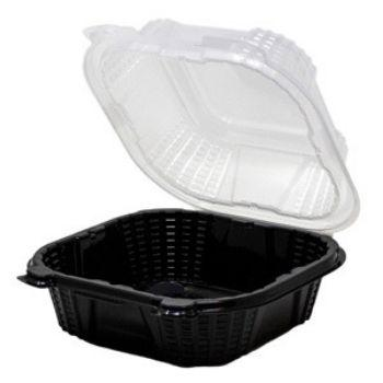 Sandwich Plastic Hinged Black & Clear